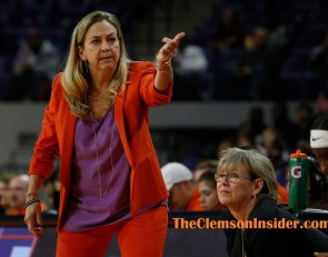 Lady Tigers outgunned by No. 5 Gamecocks