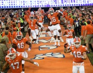 Watch the Tigers run down the hill